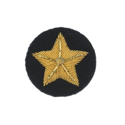 Driver (MT) or Driver Radio Operator – Qualification - British Army Badge