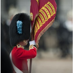 Military Colours